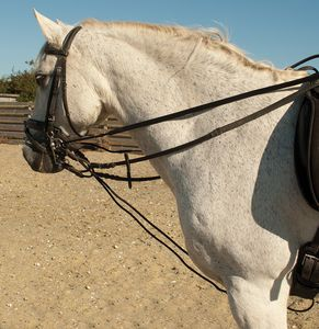 Rhinegold Leather Draw Reins With Rope Insert